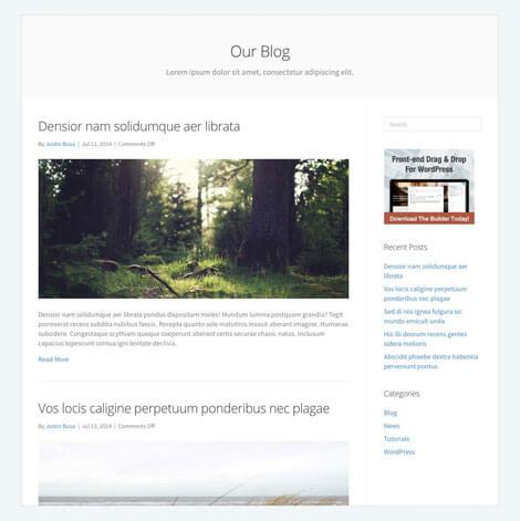 Blogbericht-pagina